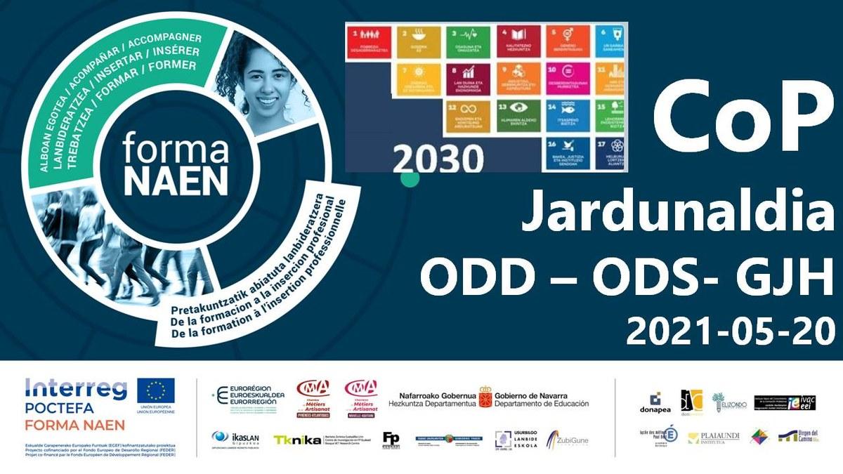 1. CoP POCTEFA-FormaNaen, ODD Session 2021-05-20